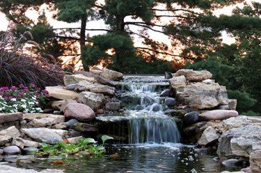 Social Venue Pond