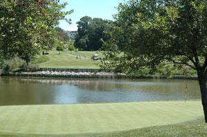 Evansville Golf 11 Green